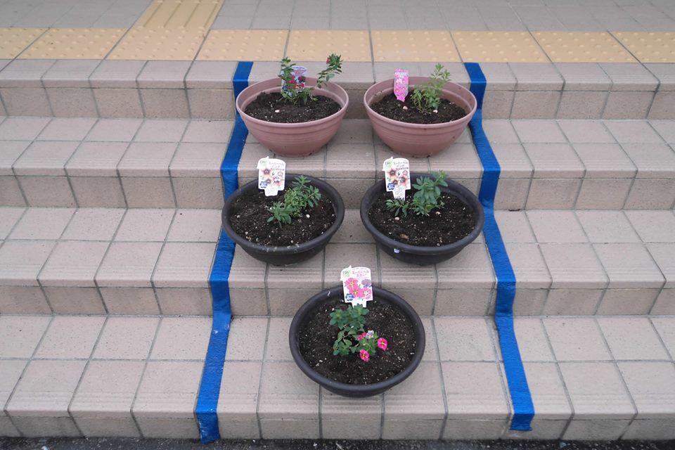 新しい花を植えよう!!