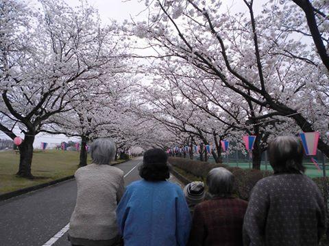 桜ロードでお花見!!