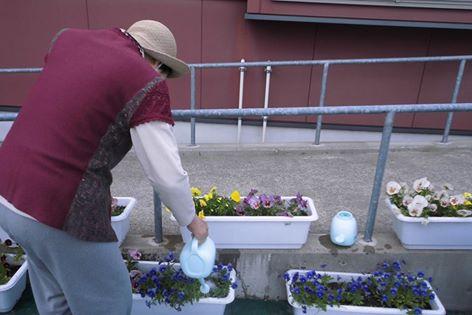 水をあげる人間の心は花に伝わる!!