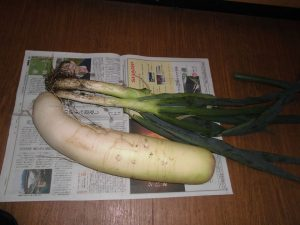 「頂いた新鮮野菜を食べて健康そのもの」